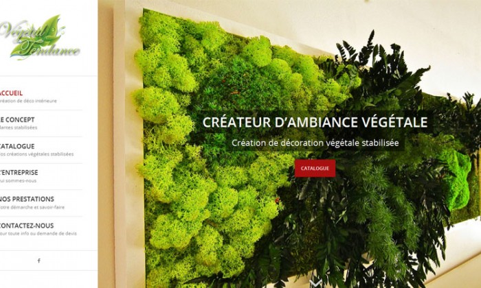 Accueil Végétal Tendance
