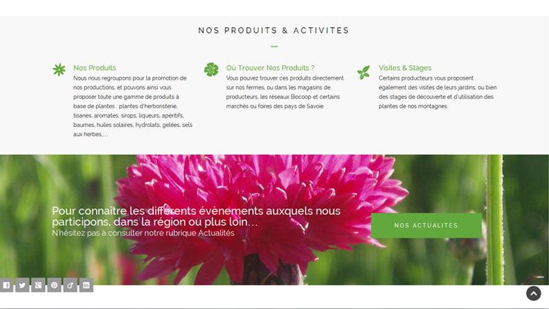 Activités des producteurs de plantes aromatiques des Savoie
