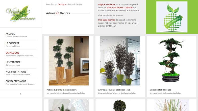 Arbres et plantes Végétal Tendance