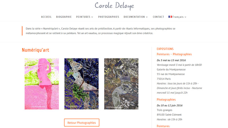 Carole Delaye, artiste Paris, Numeriqu'Art