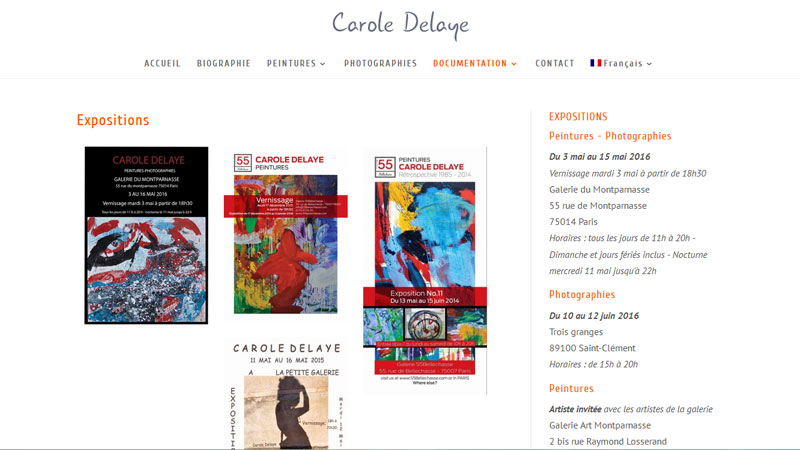 Carole Delaye, artiste Paris, expositions