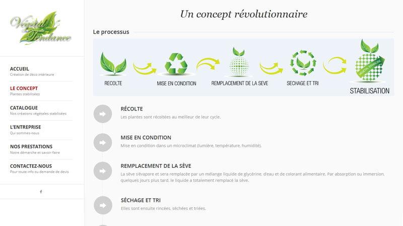 Concept Végétal Tendance